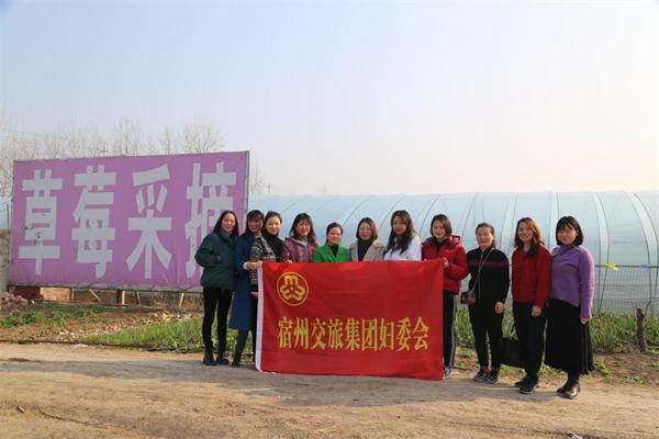 """市交旅集团妇委会开展 """"三八""""国际劳动妇女节活动"""